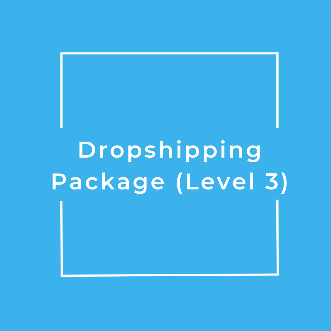 Dropshipping Package (Level 3)