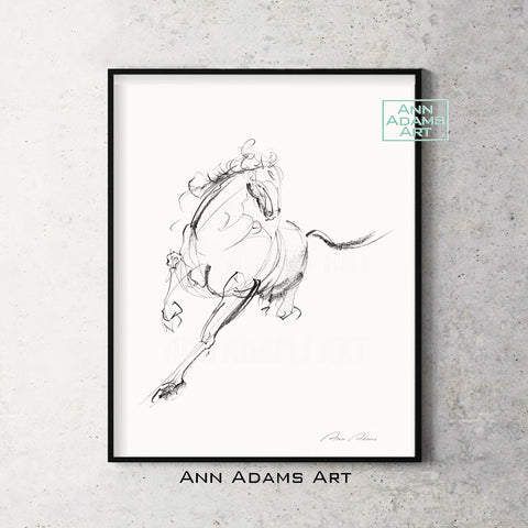 H02 quick head horse Sketch Charcoal Minimalist Fine Art Drawing black and white abstract tutorial Ann Adams Etsy 5x7 8x10 11x14 16x20 A2 size annadamsart Simple line