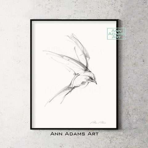 ann adams art bird sketch 1 print from original abstract charcoal black and white