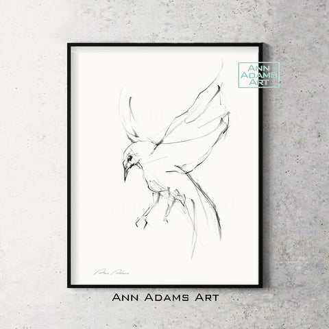 abstract flying bird sketch by Ann Adams art print from original charcoal drawing