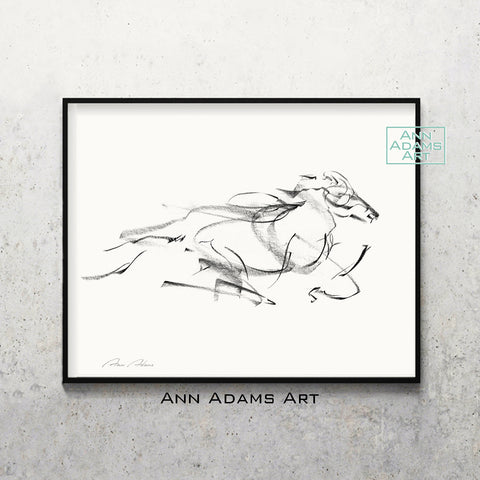 H09 quick horse Sketch Charcoal Minimalist Fine Art Drawing black and white abstract tutorial Ann Adams Etsy horizontal 5x7 8x10 11x14 16x20 A2 size annadamsart Simple line