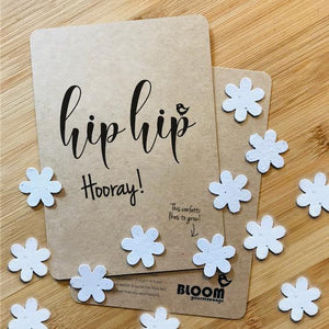 Bloeikaart Hip Hip Hooray-Ansichtkaart-Bloom Your Message-MIISHA