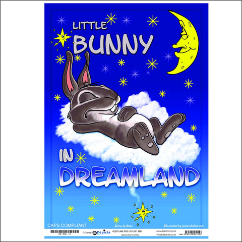 Little Bunny in Dreamland (Big Book)