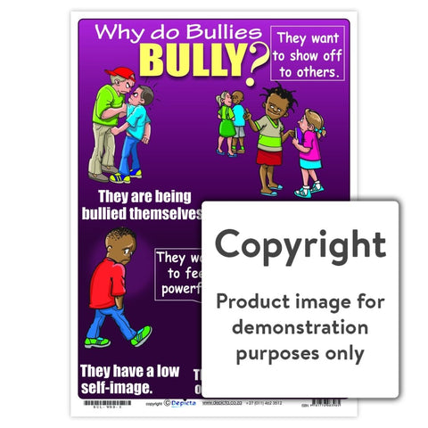 Why do bullies bully? (Primary School)