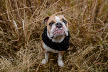 Load image into Gallery viewer, Pet infinity cowl | Dog infinity scarf | cowl scarf