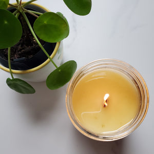 4 oz autumn scented soy wax candle