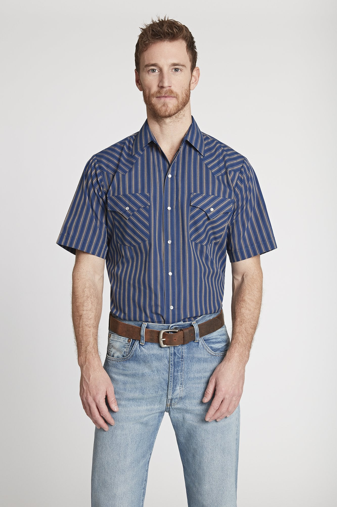 Men's Short Sleeve Striped Shirt in Blue Stripe