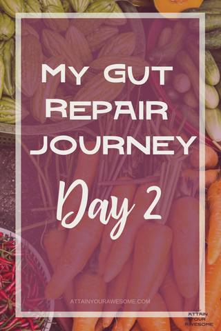 My gut repair journey day 2. This is the second day of the liquid cleanse. I'll share my thoughts and feelings throughout the day and hope to inspire you to stick with it! Listen to your body, it's important! Here's to #guthealth and fighting #candida!