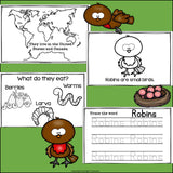 Robins Mini Book for Early Readers