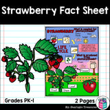 Strawberry Fact Sheet for Early Readers