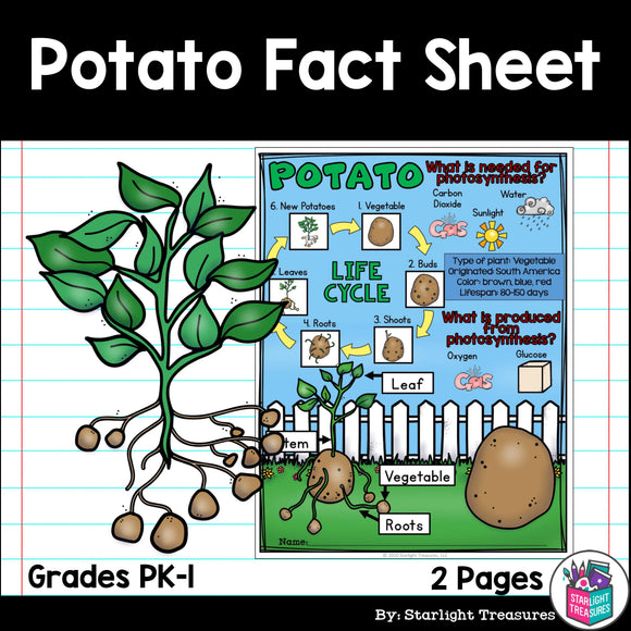 Potato Fact Sheet for Early Readers