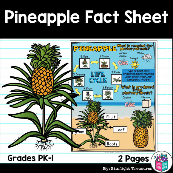 Pineapple Fact Sheet for Early Readers