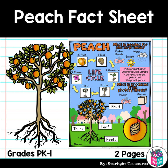 Peach Fact Sheet for Early Readers