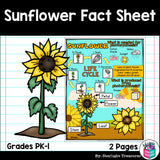 Sunflower Fact Sheet for Early Readers