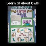 Owls Lapbook for Early Learners