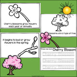 Cherry Blossom Mini Book for Early Readers