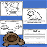Walruses Mini Book for Early Readers - Walrus