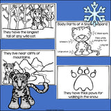 Snow Leopard Mini Book for Early Readers