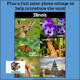 Illinois Mini Book for Early Readers - A State Study