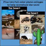 The Desert Mini Book for Early Readers: Desert Animals