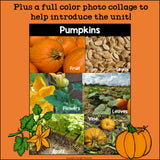 Pumpkins Mini Book for Early Readers