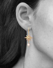 Load image into Gallery viewer, Sirius Earrings<br /><i><small>18K Gold Plated with Rose Quartz</small></i><br />