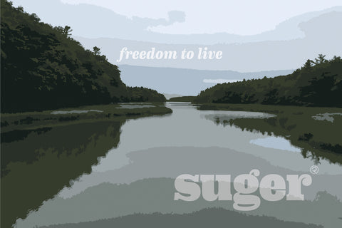 visit Suger in Portland, Maine