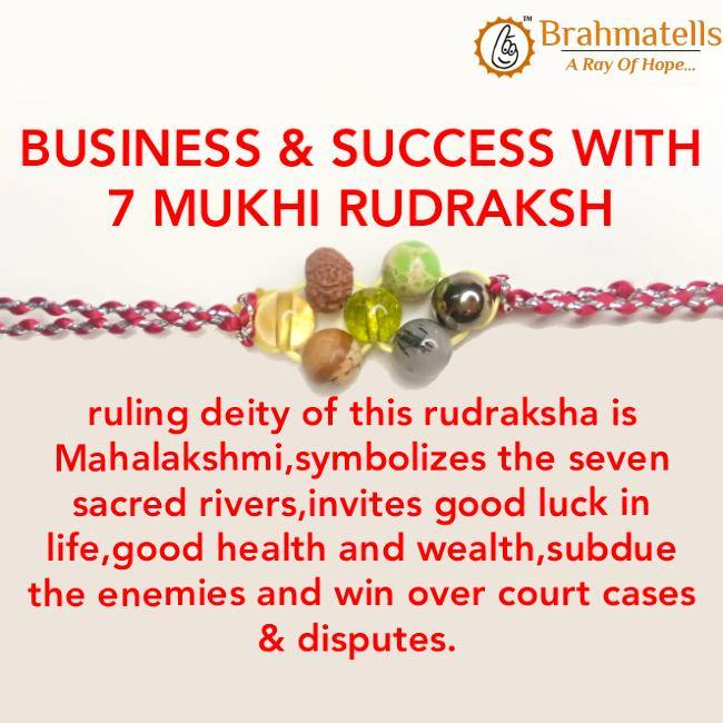 BUSINESS & SUCCESS WITH 7 MUKHI RUDRAKSH