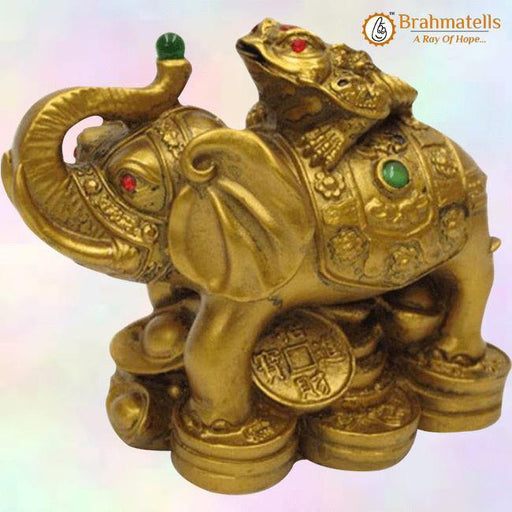Vastu Feng Shui Money Frog On Elephant- Polyresin - BrahmatellsStore