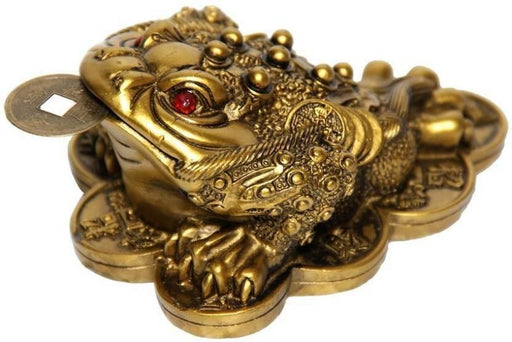 Money Frog With Coin - Brass Color - BrahmatellsStore