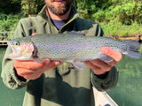 Half Day Guided Trip Little Red River 1-2 Fisherman
