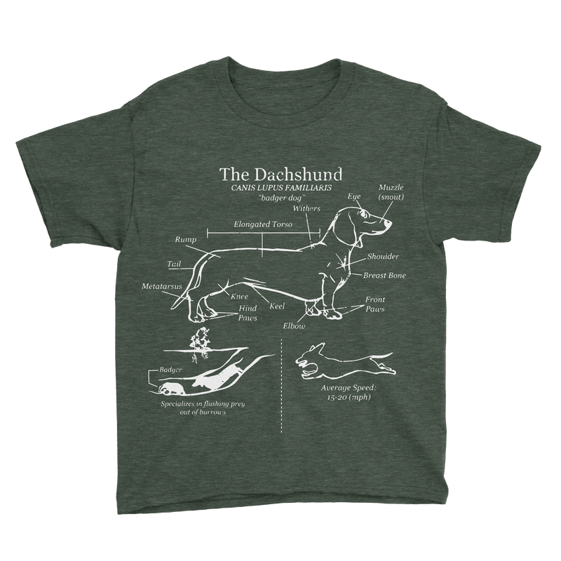 Dachshund Anatomy Blueprint Youth Tee