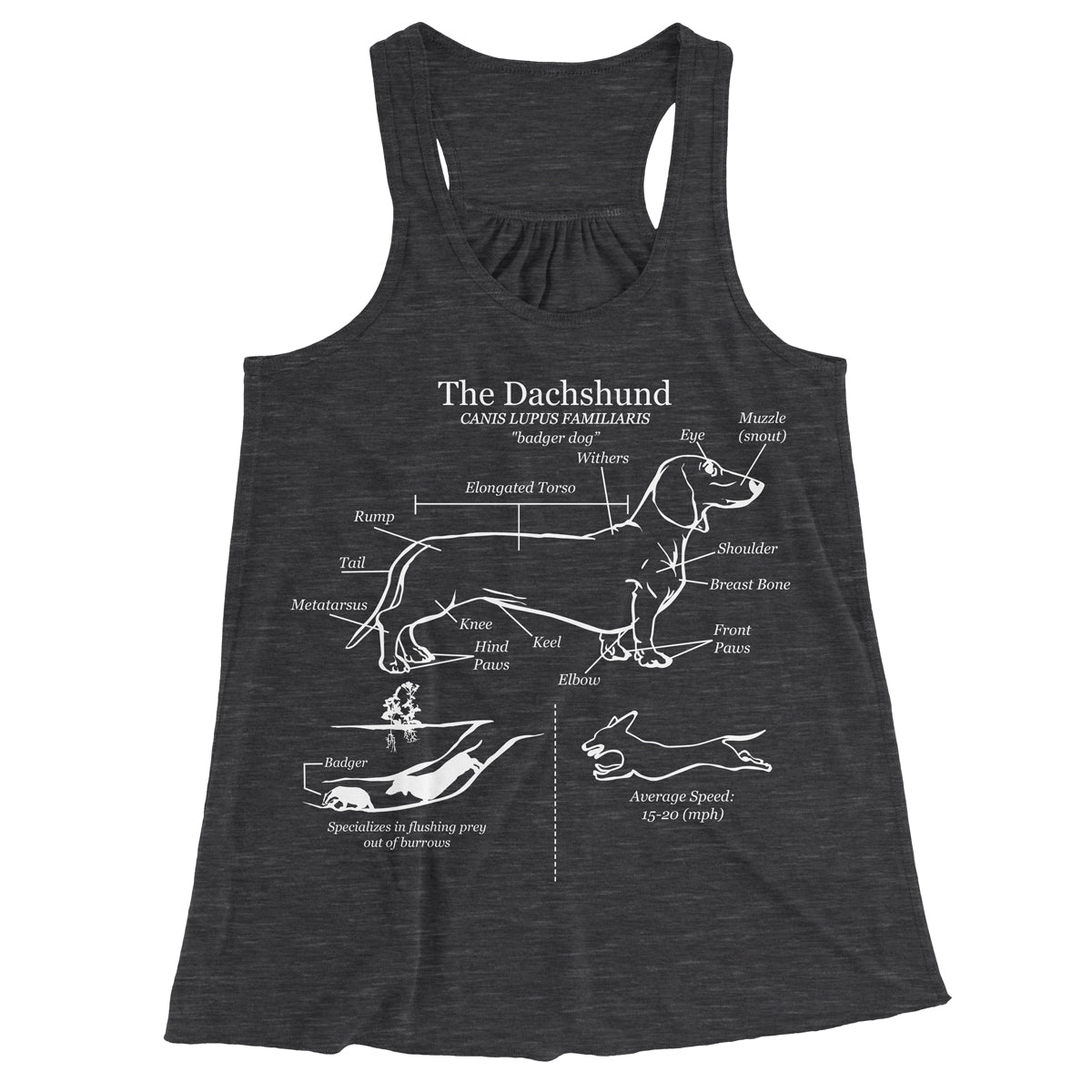 Dachshund Anatomy Blueprint Ladies Racerback Tank