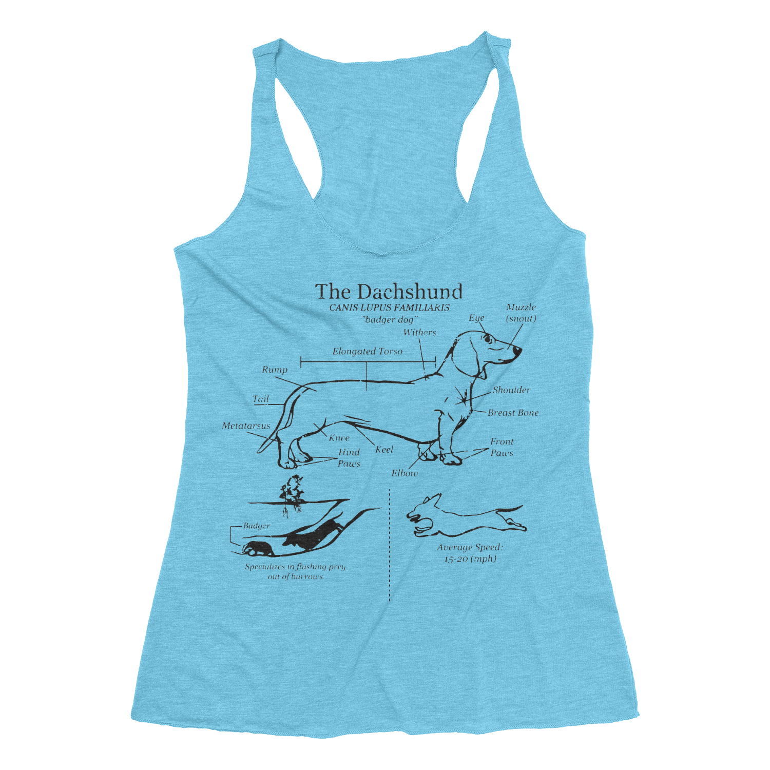 Dachshund Anatomy Blueprint Triblend Ladies Racerback Tank