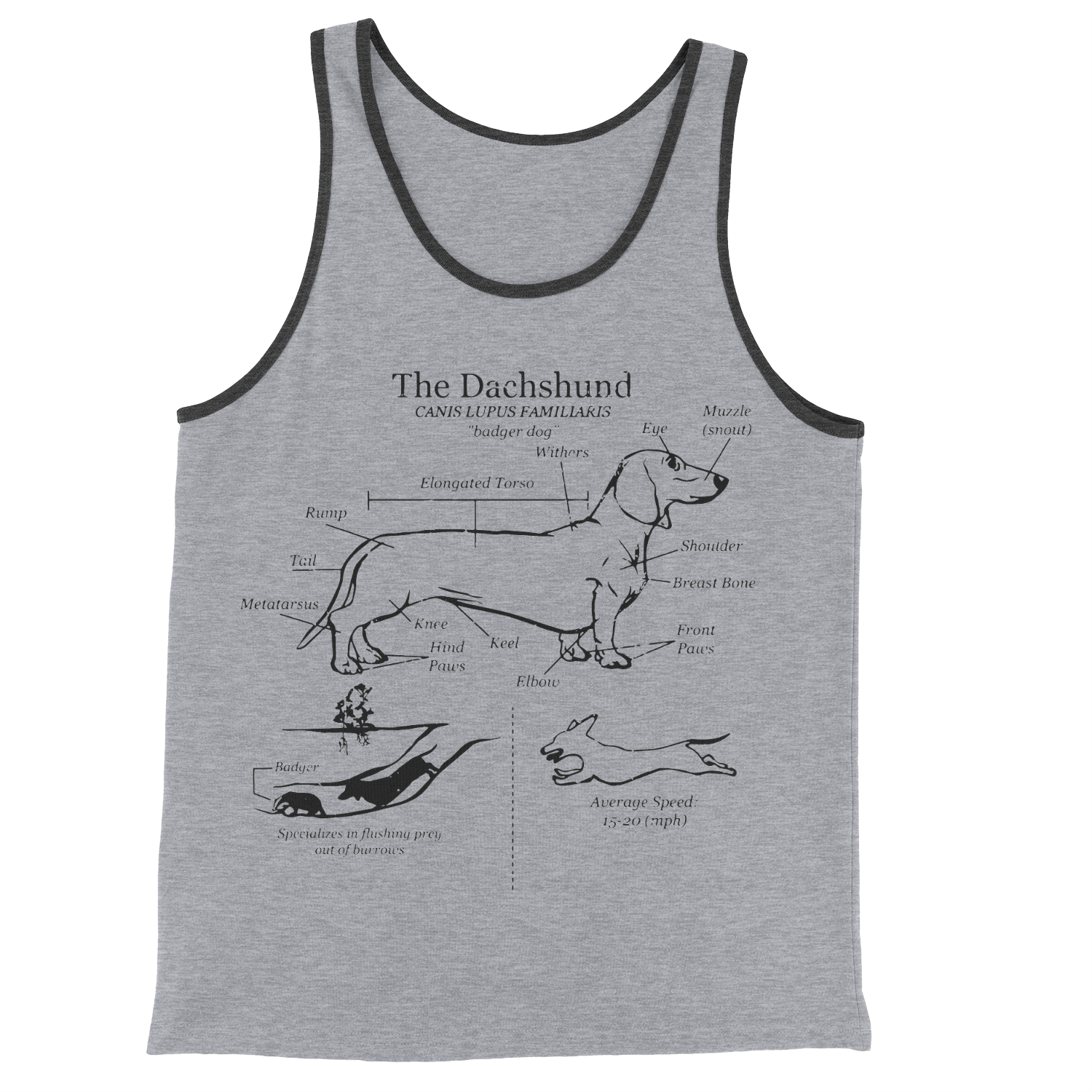 Dachshund Anatomy Blueprint Unisex Tank Top