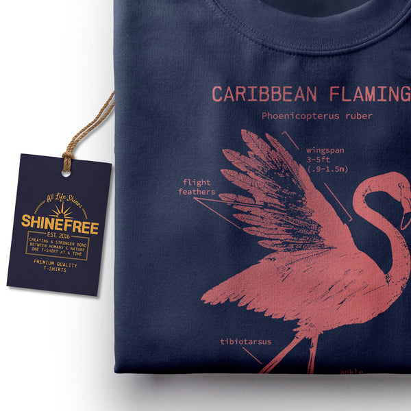 Flamingo Anatomy t-shirt