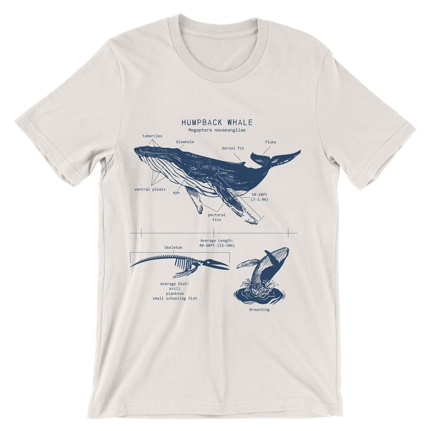 Humpback Whale Anatomy t-shirt