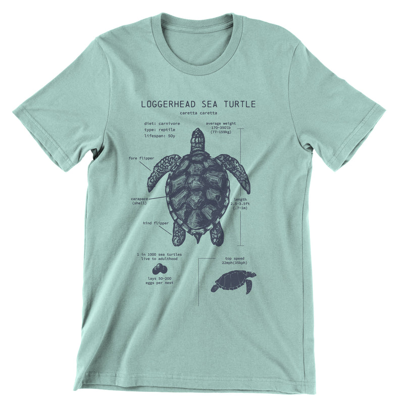 Loggerhead Sea Turtle Anatomy t-shirt