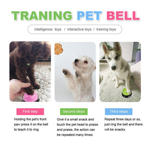 Educational IQ Training pets
