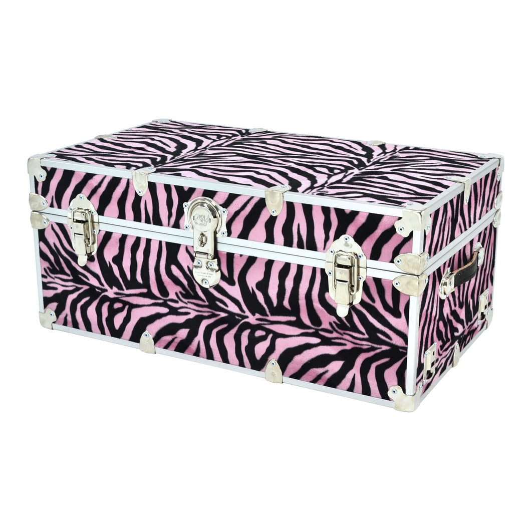 Large Zebra Trunk - 32