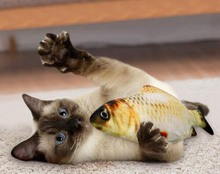 Load image into Gallery viewer, Fishy Cat Friend