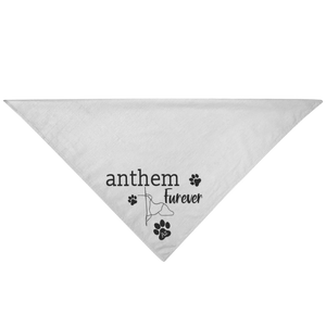 "Anthem - Arizona ""Anthem Furever"" Pet Bandanna"