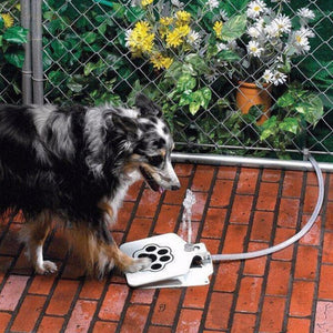 Pet Water Fountain Water Fountain For Dogs and Cats. This amazing Outdoor Dog and Cat Pet Water Fountain will provide your dog with fresh water all day. Automatic outdoor dog water fountain on sale now.