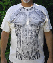 Load image into Gallery viewer, Muscles T-Shirt. 2 Sided