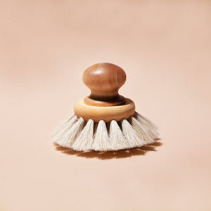 Dish Brush with Round Knob