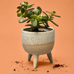 Stranger Studio 3-legged Planter