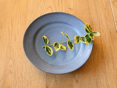 Small Blue Matte Plate by Mark Robinson at OEN Shop