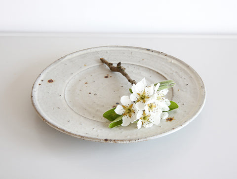 Spotted Rimmed Plate by Shinko Nakanishi