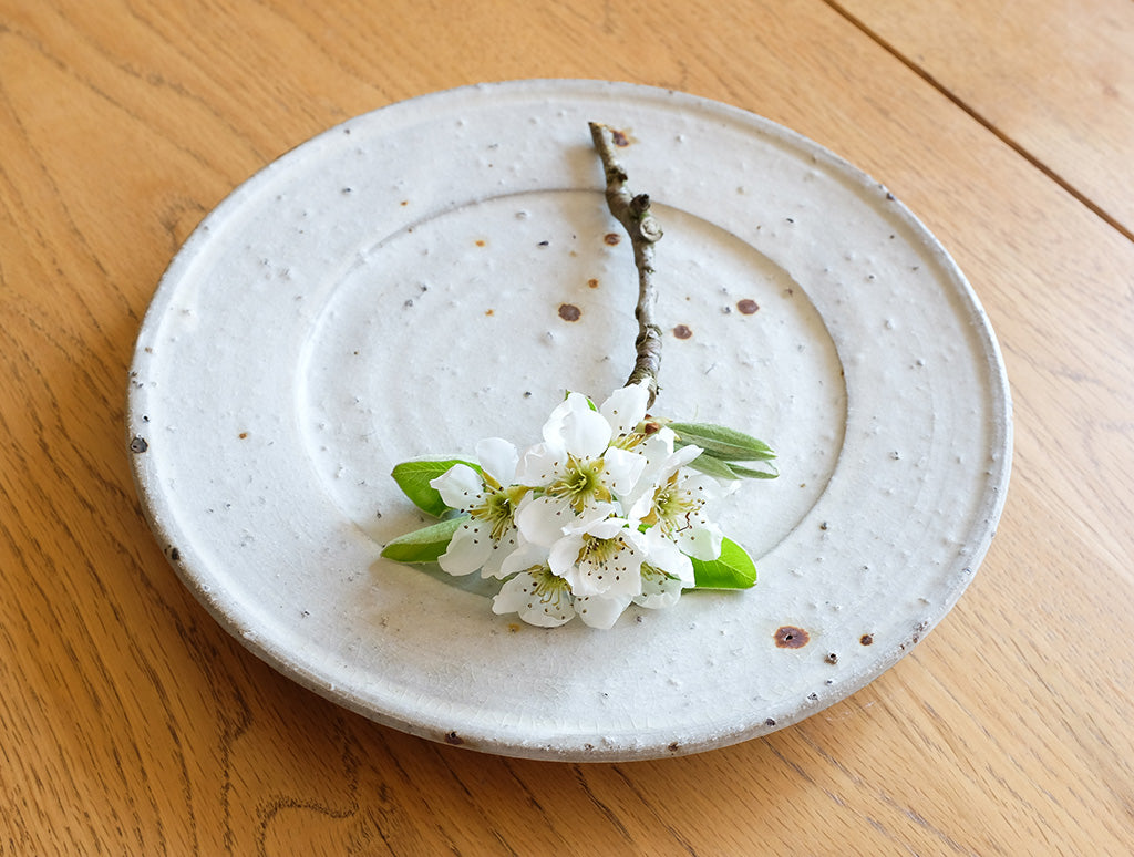 Spotted Rimmed Plate by Shinko Nakanishi at OEN Shop