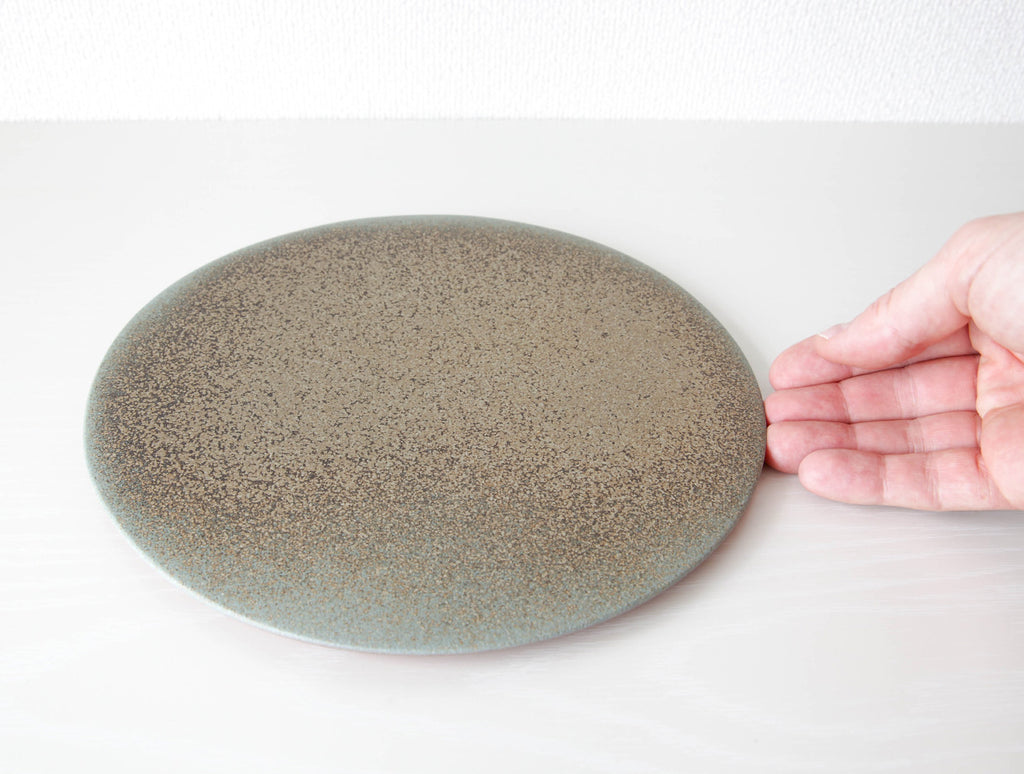 Speckled Blue Flat Plate by Mushimegane Books at OEN Shop
